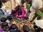 11/9(土)自然体験プログラム「葉っぱの図鑑作り×焚火で焼き芋チャレンジ」実施しました!